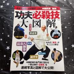 """Thumbnail of """"功夫の必殺技大図解"""""""