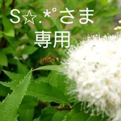 "Thumbnail of ""シャネル CHANEL サンプル"""