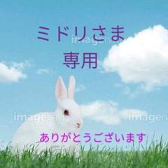 "Thumbnail of ""ミドリさま専用"""