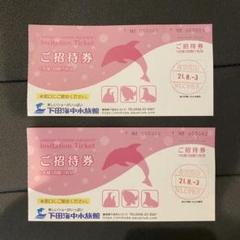 "Thumbnail of ""下田海中水族館 施設ご利用券 2名分"""