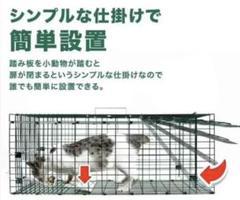 "Thumbnail of ""動物捕獲器 Lサイズ アニマルトラップ 野良猫 迷子猫 小動物保護 実獣被害"""