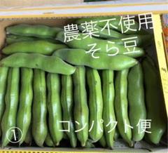 "Thumbnail of ""農薬不使用 そら豆 コンパクト便 ①"""