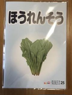 "Thumbnail of ""ベビーパーク オリジナル ピクチャーブック 新品未開封"""