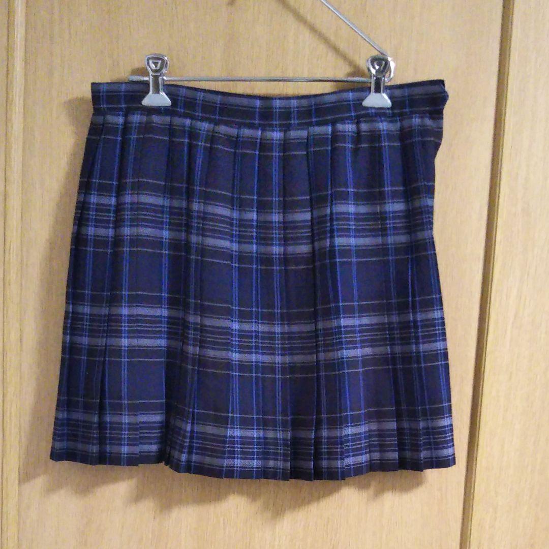 aa9365fc310ca2 メルカリ - 紺系チェックプリーツスカート 【ミニスカート】 (¥888) 中古 ...