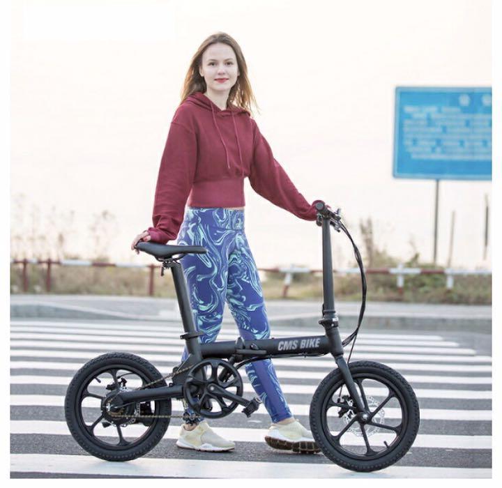 折りたたみ 電動 アシスト 自転車