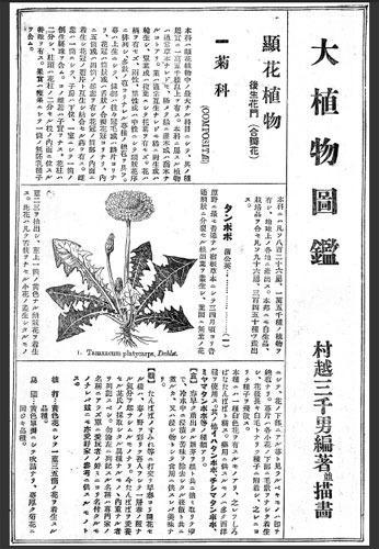 メルカリ - 村越大植物図鑑PDFmicroSD4GB版 1925年 約4300品種 【趣味 ...