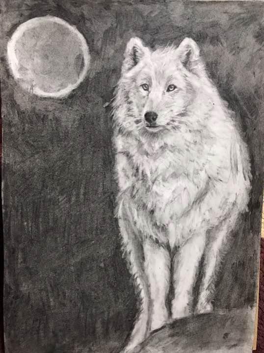メルカリ 狼 イラスト 絵画タペストリ 1000 中古や未使用のフリマ