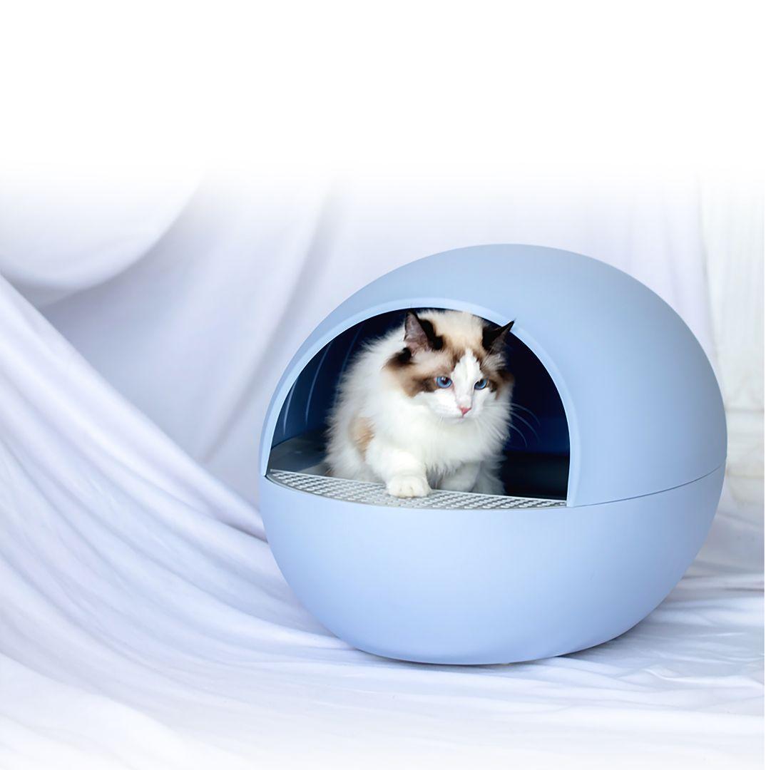 の トイレ 猫 自動