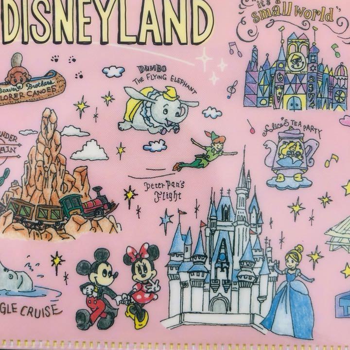 メルカリ ディズニー 手描き風 イラスト リゾートマップ マスクケース