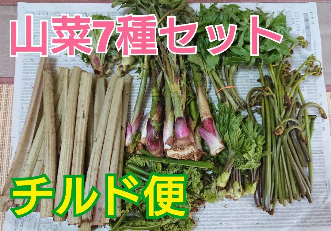 山菜 北海道