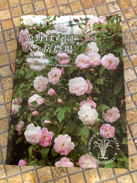 姫野 バラ 園