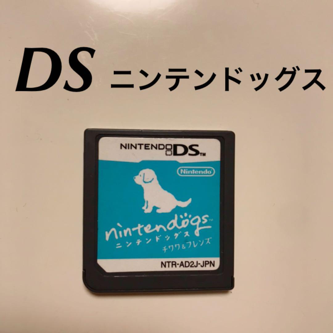 化 初期 Ds ソフト