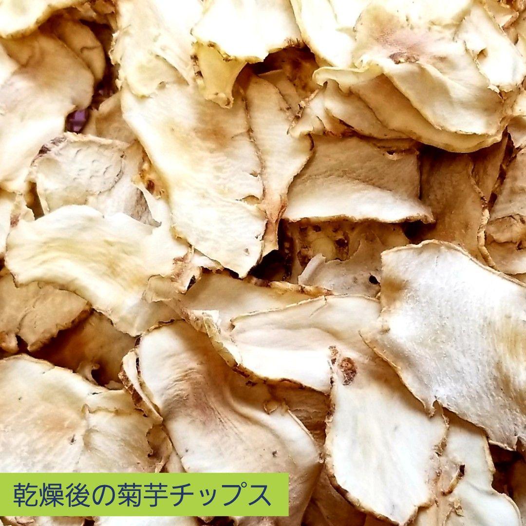 菊芋 アレルギー