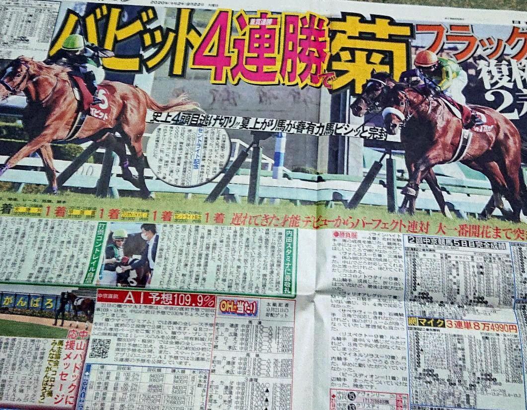 スポーツ 競馬 日刊