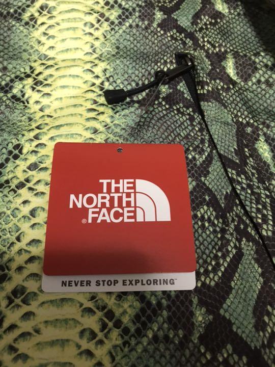 supreme the north face snake skin jacket