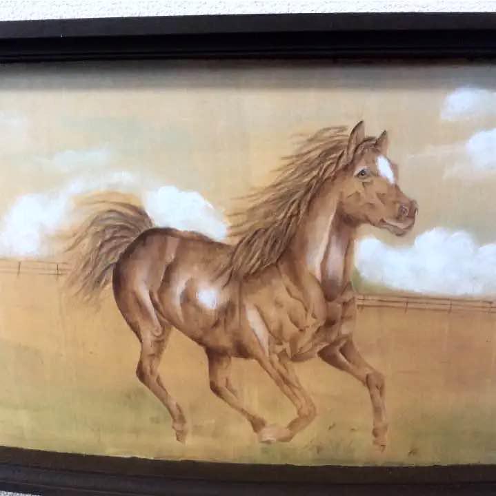 25 Beautiful Black Horse Pictures | 美しい馬, 黒い馬, かっこいい動物