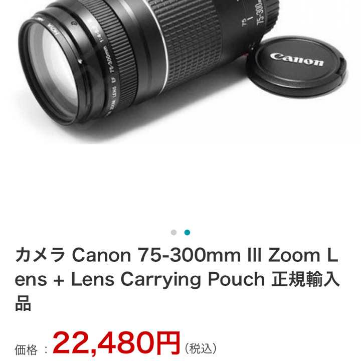 Canon 75-300mm III Zoom Lens Lens Carrying Pouch