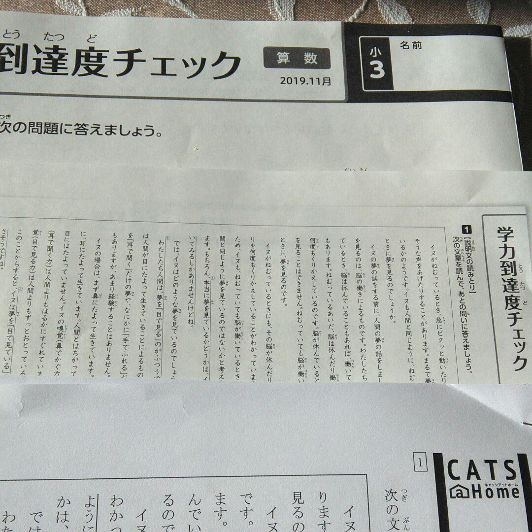 ゼミナール cats 栄光