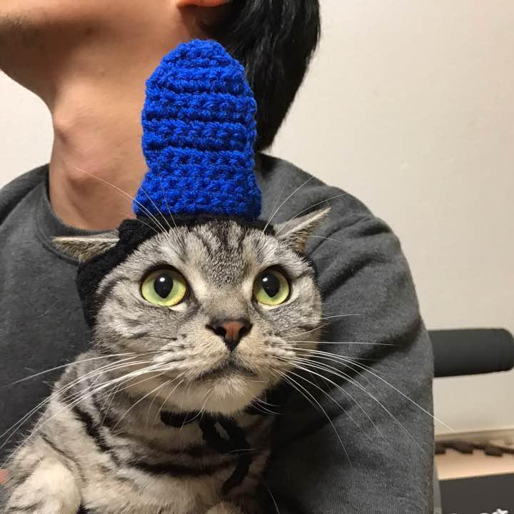 内裏様 帽子 お