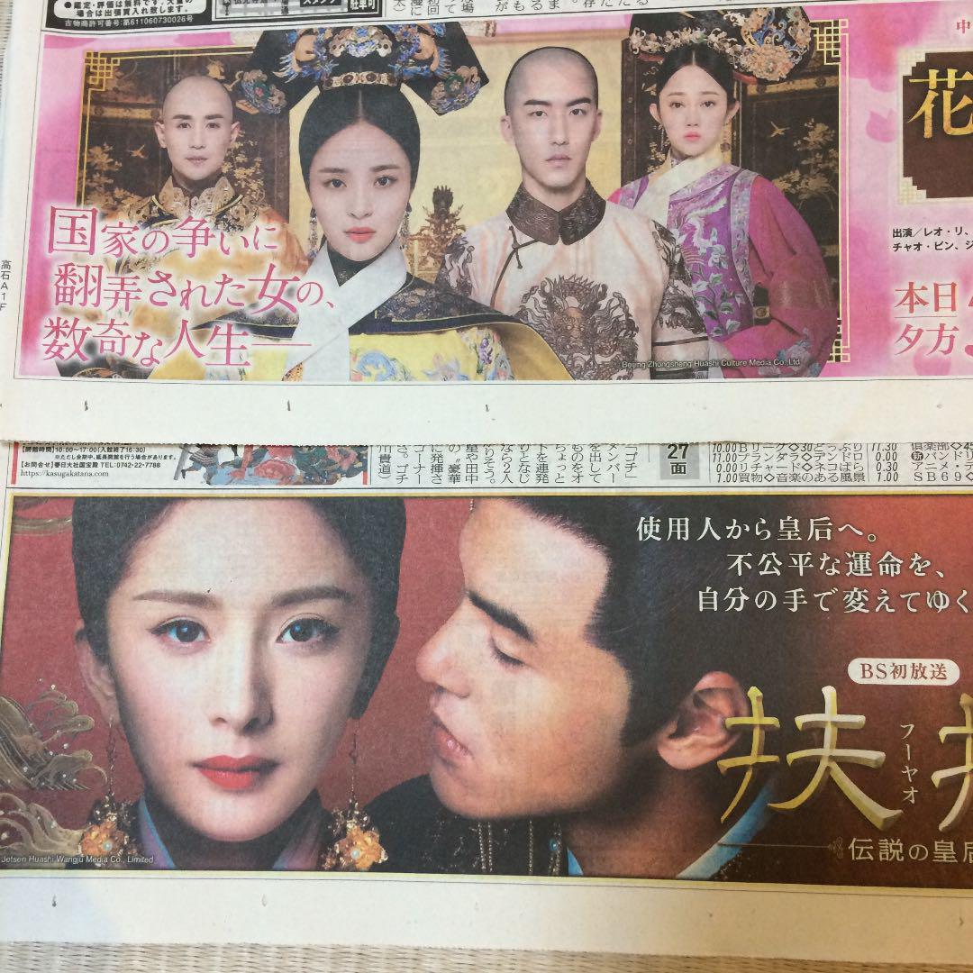 中国 ドラマ 花 散る 宮廷 の 女 達