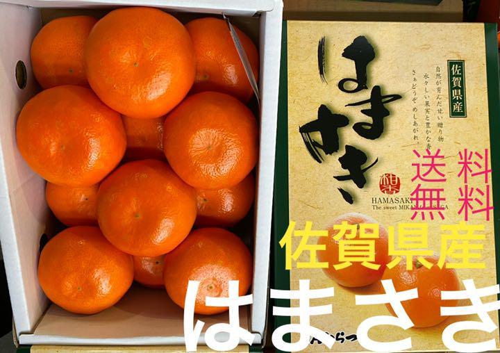 は まさき 柑橘