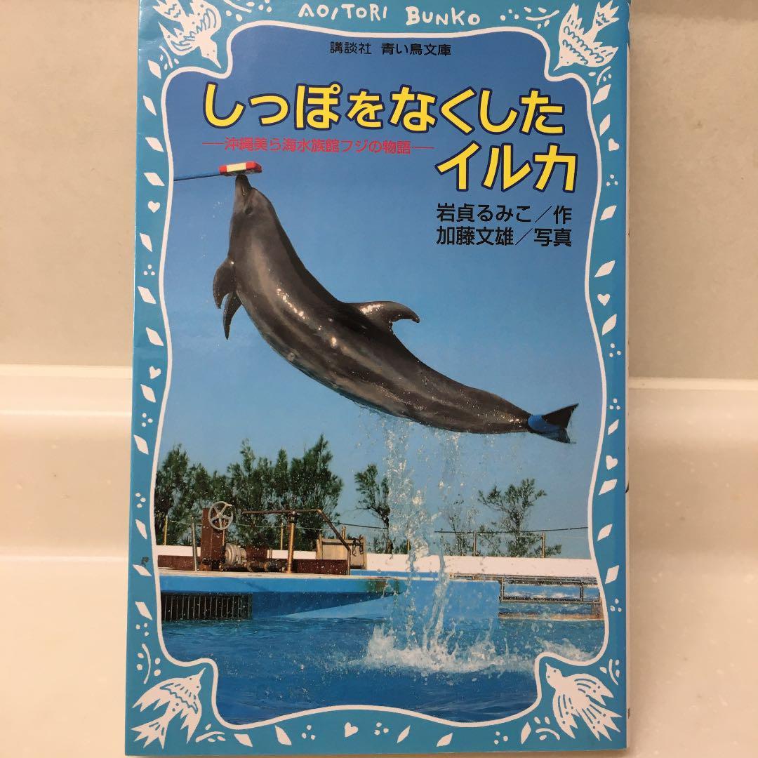 しっぽ を なく した イルカ イルカ (歌手) - Wikipedia