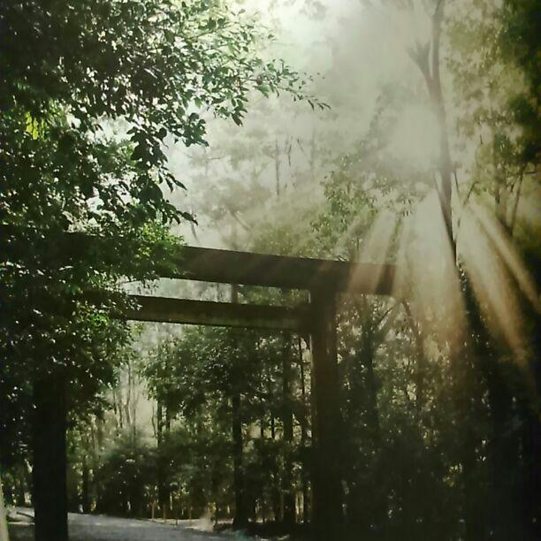 メルカリ - 新品 水と森の聖地伊...