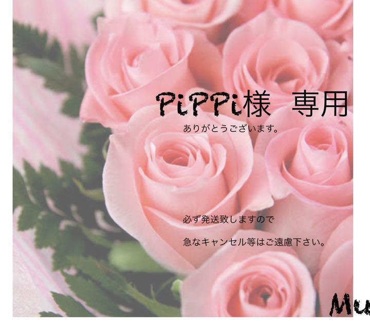 PiPiPi様専用(5月7日〆切)
