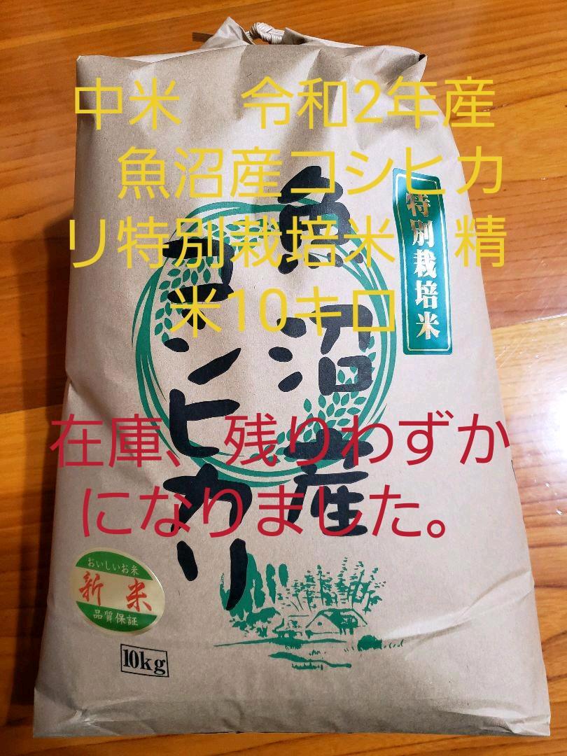 中米 令和2年産 魚沼産コシヒカリ特別栽培米 精米10キロ