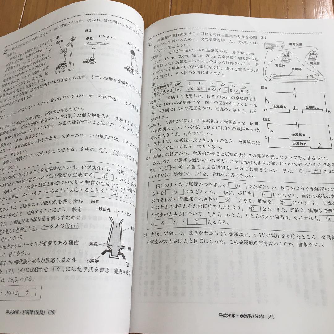 群馬 県 公立 高校 入試