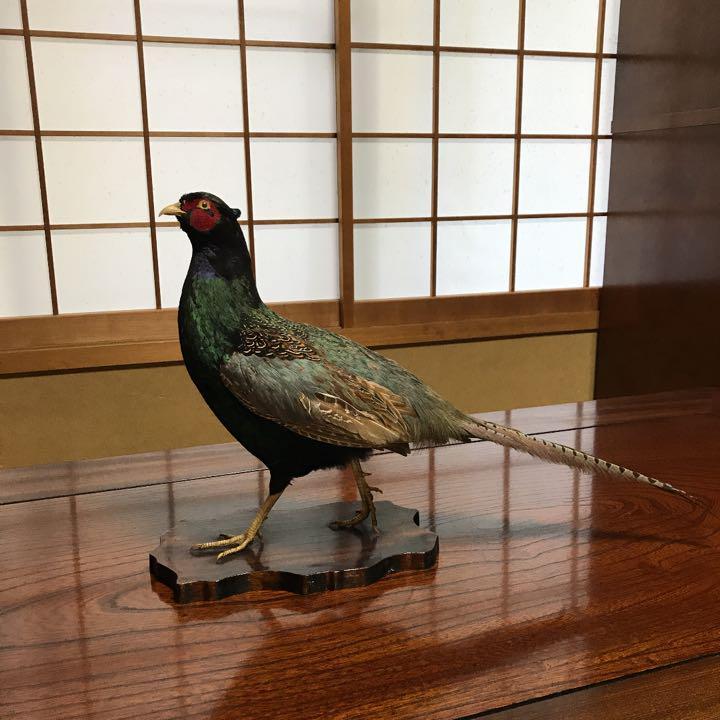 メルカリ - 日本の国鳥キジ 【置物】 (¥5,000) 中古や未使用のフリマ