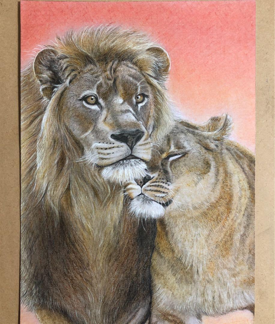 メルカリ ライオン イラスト 絵画タペストリ 3777 中古や未