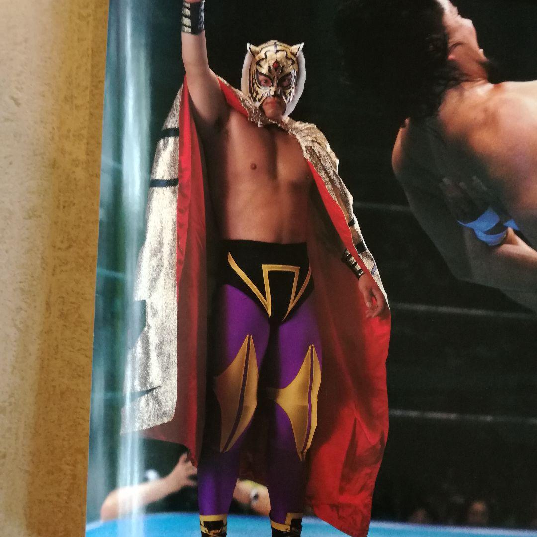 マスク プロレスラー