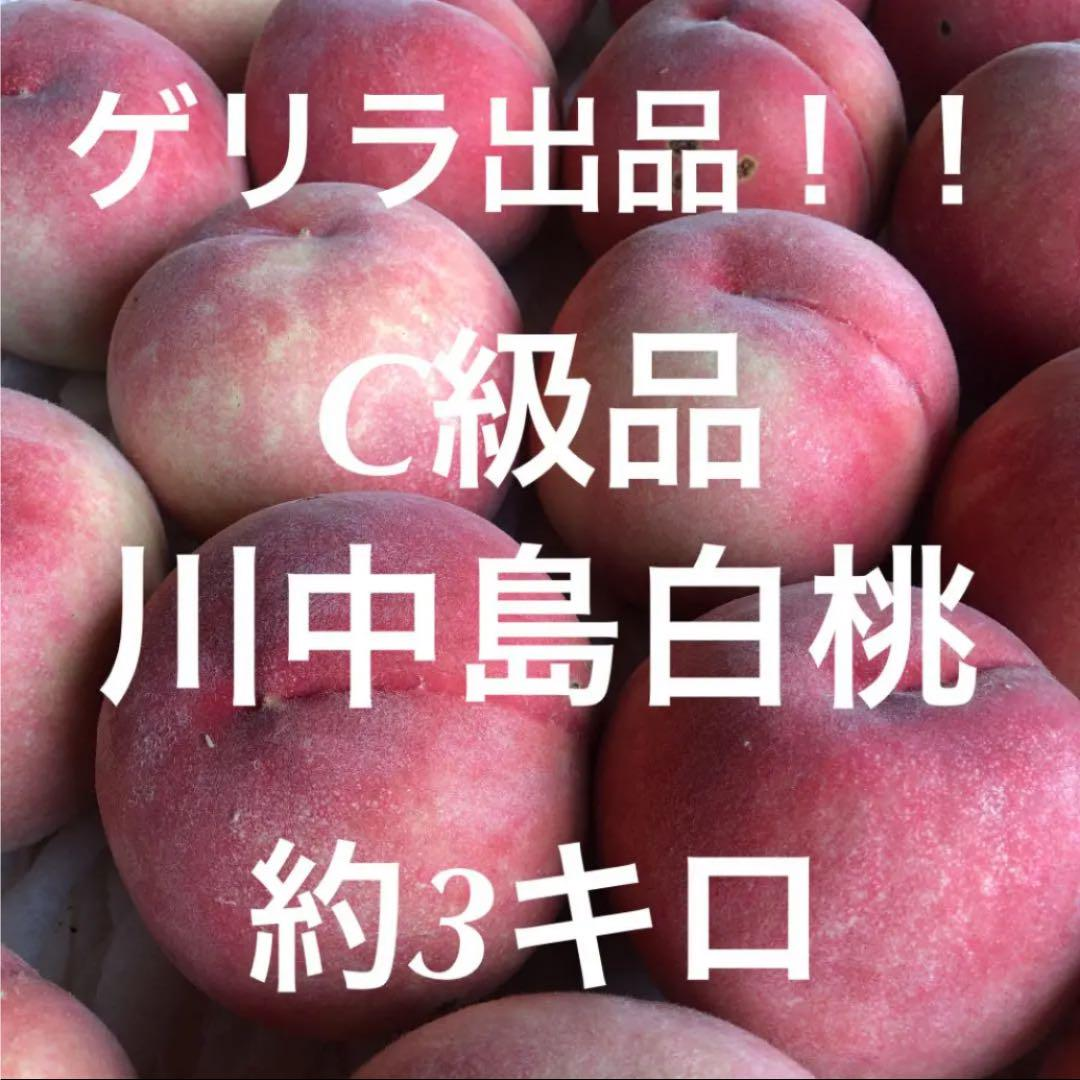 中島 白桃 川