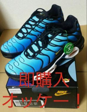 メルカリ ギン 27.5cm Nike Air Max Plus TN Greedy